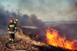 Firefighters battle a wildfire - 230799392