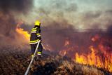 Firefighters battle a wildfire - 230800937