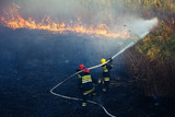 Firefighters battle a wildfire - 230801182
