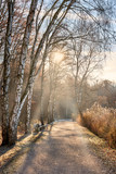 Spaziergang im Spätherbst, erster Frost