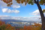 Seoul city skyline during autumn.    - 230821578