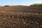 Plowed agricultural field - 230841304