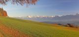 Aussicht von Längenberg, Berner Alpen, Schweiz  - 230841938