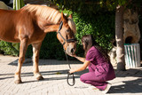 Portrait of young female equestrian veterinarian with brown horse at an animal park. - 230872923