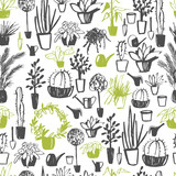 Vector  seamless pattern with  hand drawn  house plants. - 230895519