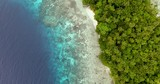 Overfly of tropical pacific island and coral reef - 230906930