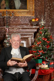 Christmas story in a castle - 231015344