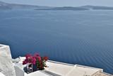 Santorin, terrasse  blanche avec Bougainvillier face à la mer