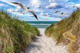 Weg zum Strand - Schild Ferien - 231053780