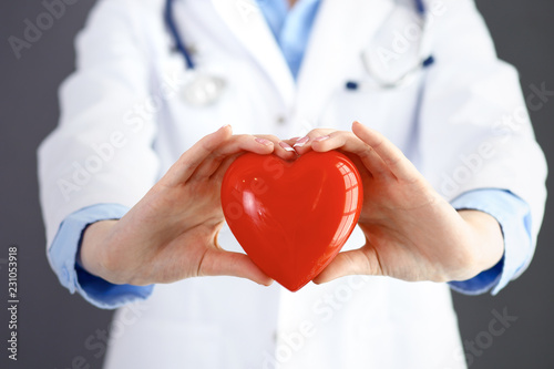 Female doctor with stethoscope holding heart in her arms. Healthcare and cardiology concept  in medicine  - 231053918