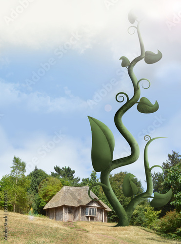 giant beanstalk rising next to cottage - 231061552