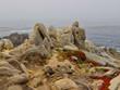Rochers au bord de l'océan