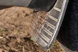 dirt car - 231099390