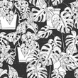 Seamless pattern with  Scindapsus aureus Eagler and  Monstera  in pots on black background. Vector monochrome illustration.