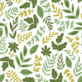 Hand drawn seamless pattern - salad greens and leaves isolated on white background in trendy organic style. Vector illustration for vegetarian menu or  packaging design. - 231150164