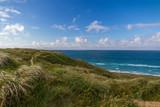 West Coast in Denmark - 231158963