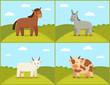 Set of Domestic Animals Color Vector Illustration