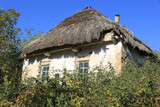 Old rural house - 231183953