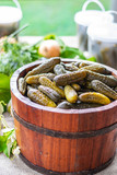 Preserved pickled cucumbers with dill and  onions in a wooden barrel - 231208343