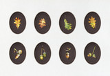 Illustration with oak acorns and leaves  painted  with colored pencils. Autumn element for creating prints on clothes, textiles, for invitation or poster design. - 231212959