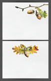Set of two template cards with autumn oak leaves and acorns for invitation or poster design. Illustration painted with colored pencils on white watercolor paper background. - 231213135