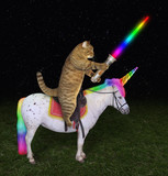 The cat with a glowing  sword is riding the real unicorn at night. - 231225332