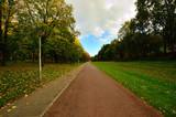 Droga wśród drzew w parku miejskim. - 231225551