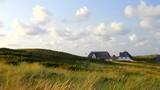 Dünenlandschaft mit Reetdach Häusern - 231231130