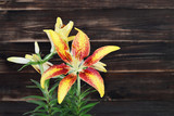 Yellow lily on wooden background