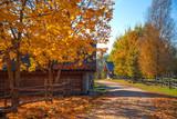 Russian old village in autumn. - 231320520