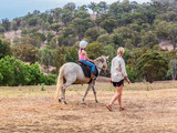 Young child learning to ride in the upper Hunter Valley, NSW, Australia. - 231324338