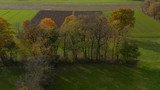 Aerial shot of trees in hedgerow, vibrant autumn foliage - 231337713