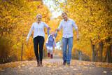 Herbstspaziergang in der Allee - 231361762