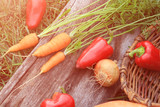 Vegetables. Fresh bio vegetable over nature background - 231375513