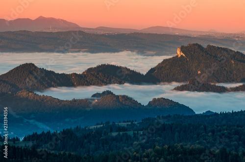 Misty mountain landscape in the morning, Pieniny, Poland - 231394356