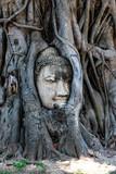 Ayutthaya, tempel, UNESCO - 231405967