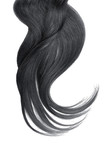 Black natural hair isolated on a white background - 231444966