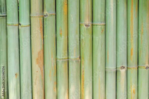 Bamboo floor background