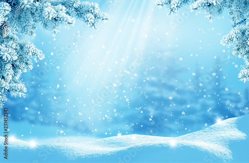 Merry Christmas and happy new year greeting card. Winter landscape with snow .Christmas background with fir tree branch - 231452343