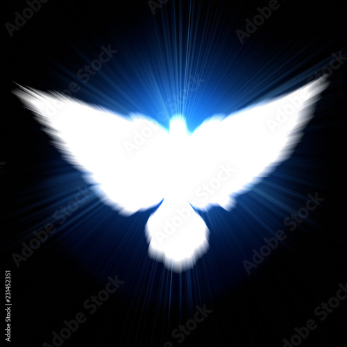 Holy sign of a white dove - 231452351