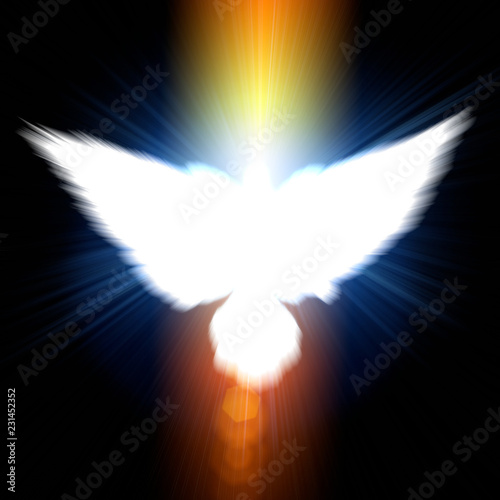 Holy sign of a white dove - 231452352
