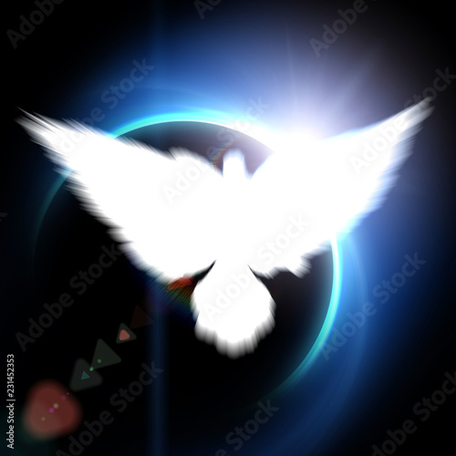 Holy sign of a white dove - 231452353