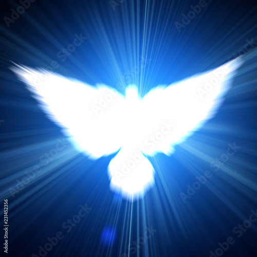 Holy sign of a white dove - 231452356