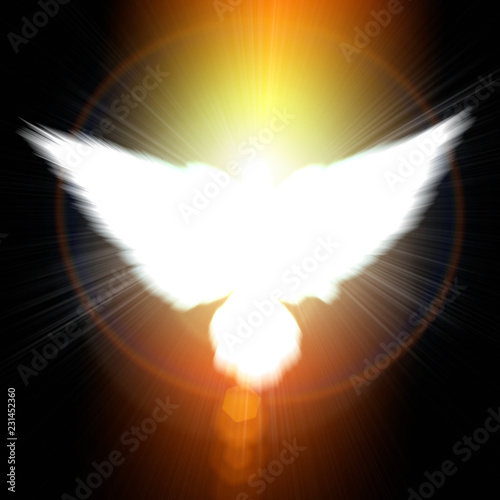 Holy sign of a white dove - 231452360