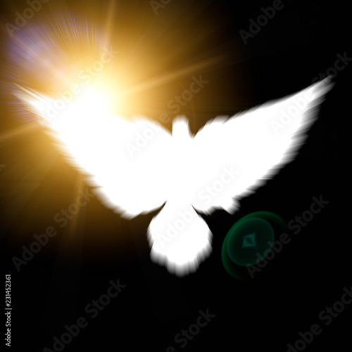 Holy sign of a white dove - 231452361