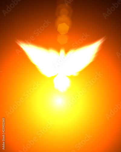 Holy sign of a white dove - 231452365