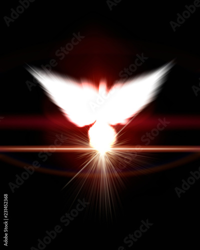 Holy sign of a white dove - 231452368