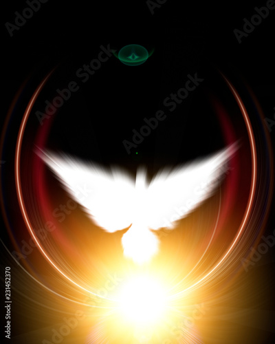 Holy sign of a white dove - 231452370