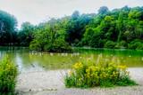 Seagull reserve