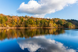 Autumn landscape with colorful trees and blue sky with white fluffy clouds reflected in the water. Fall scene in County Wicklow, Ireland.